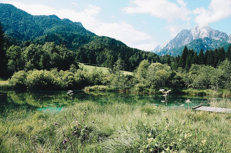 réserve naturelle de Zelenci, road-trip en slovénie, autour de Kranjska Gora