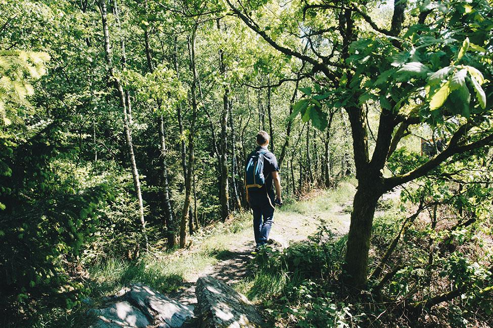 randonnée sur les crêtes de la meuse dans les ardennes, point de vue de la longue roche