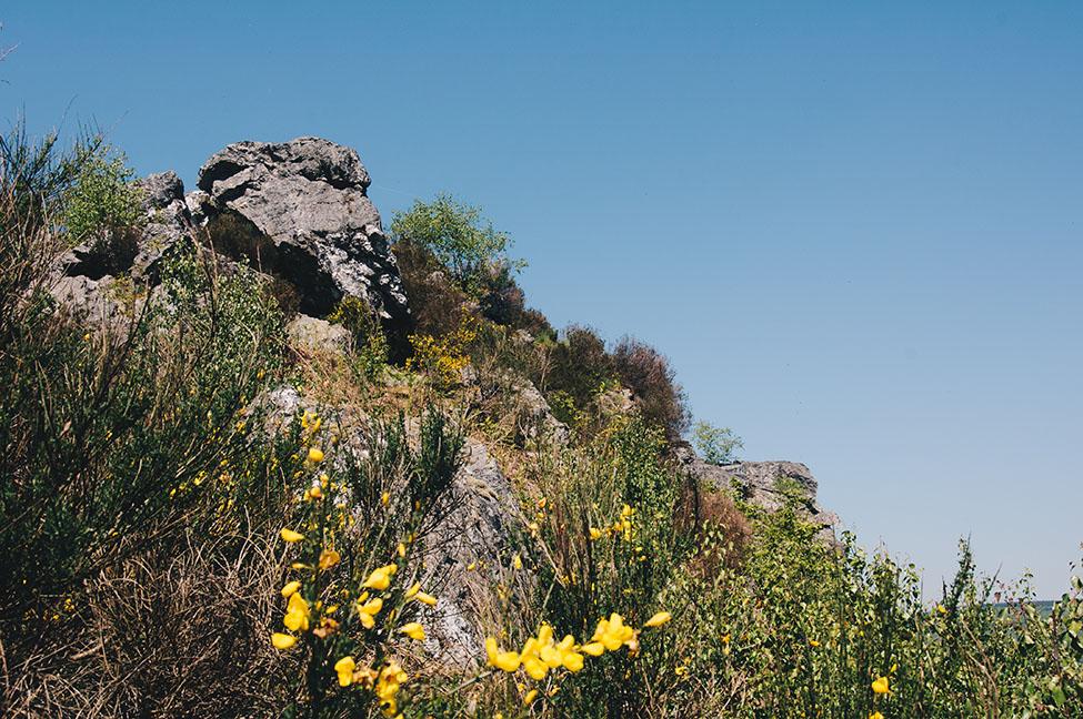 randonnée sur les crêtes de la meuse dans les ardennes, rochers des 4 fils aymon