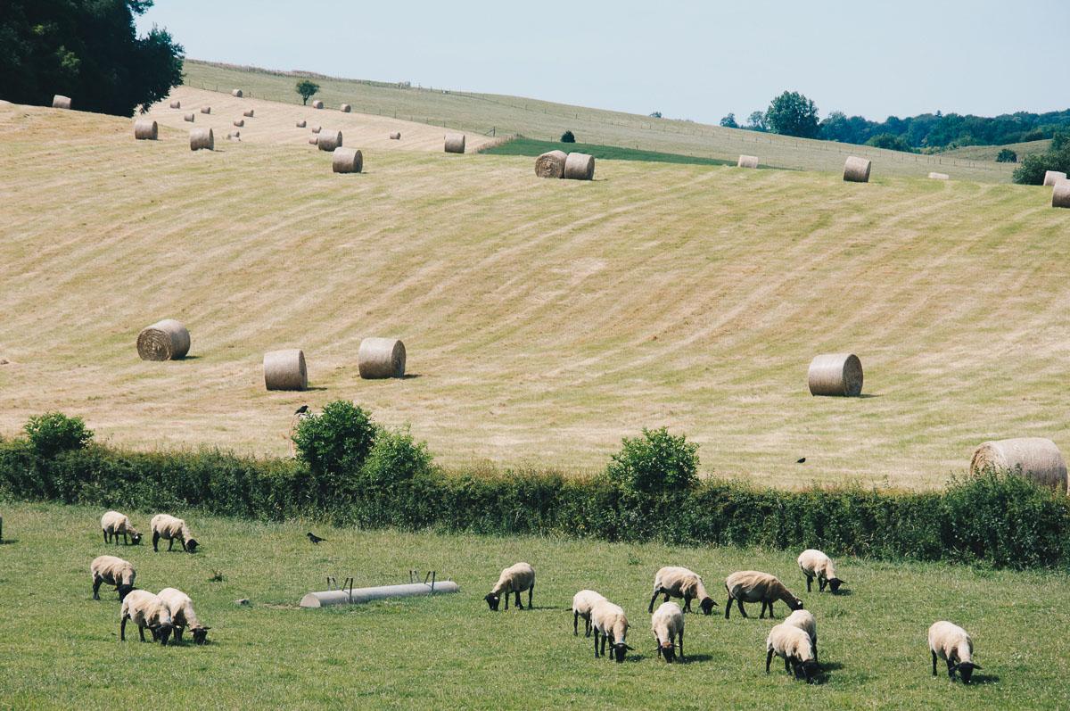 randonnee des coteaux vikings, pays de bray, week-end au calme , normandie