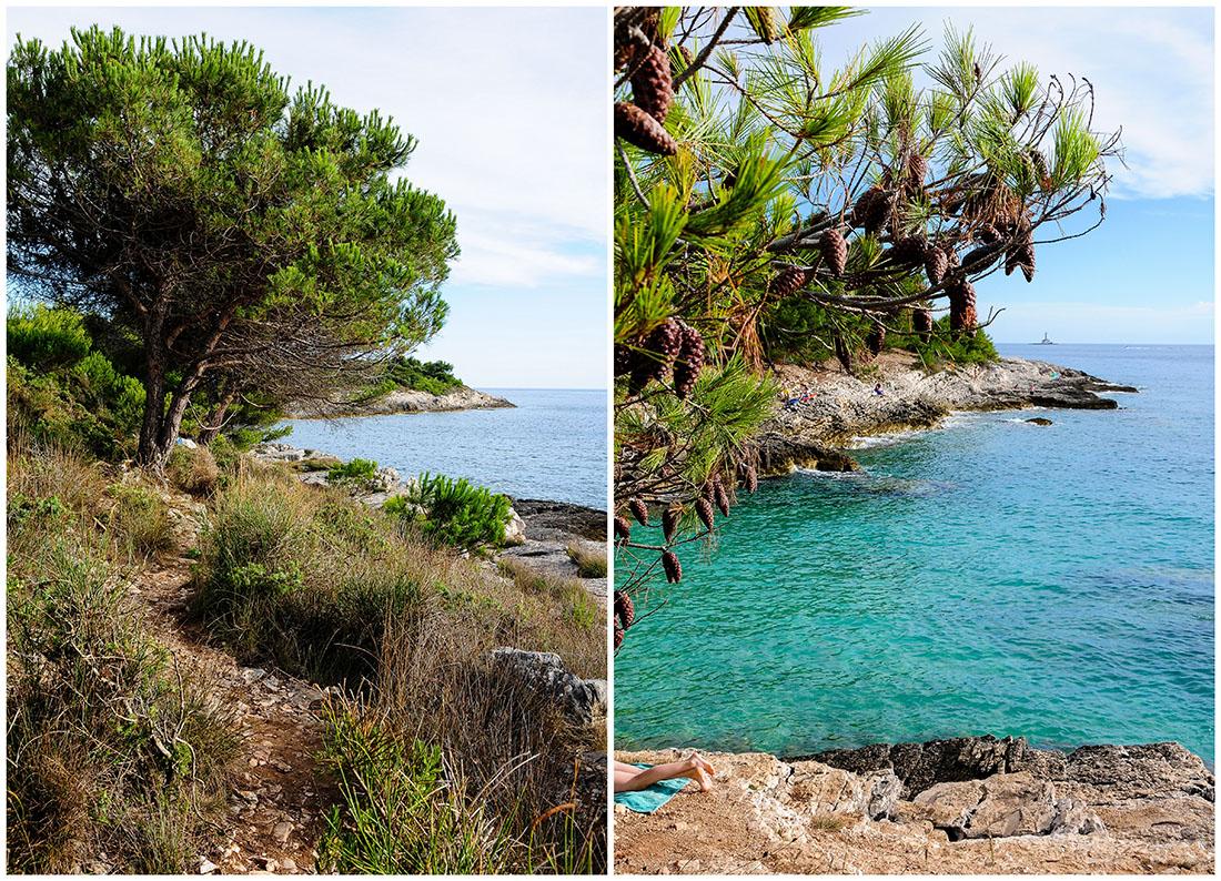 cap Kamenjak, autour de Pula , road-trip en Croatie, Istrie