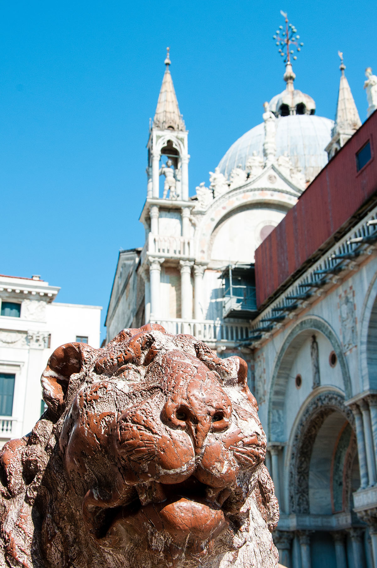 lion, place saint-marc, venise