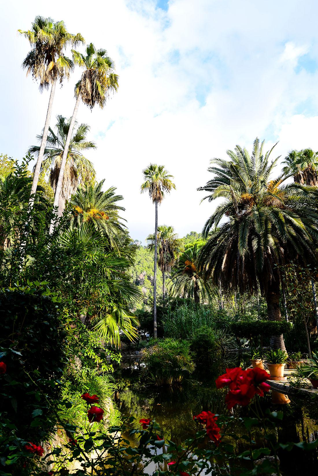 jardins alfabia, autour soller, majorque