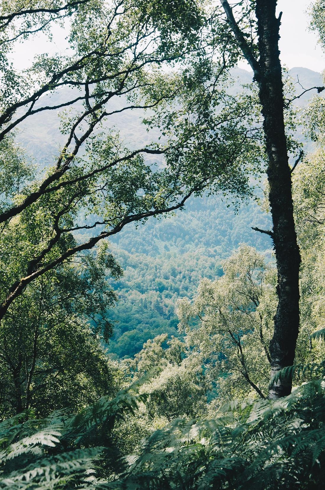 randonnée ben a'an, loch katrine, ecosse