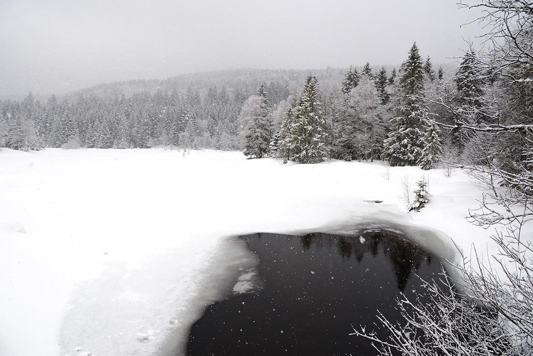 lac de Lispach, Vosges, hiver, neige
