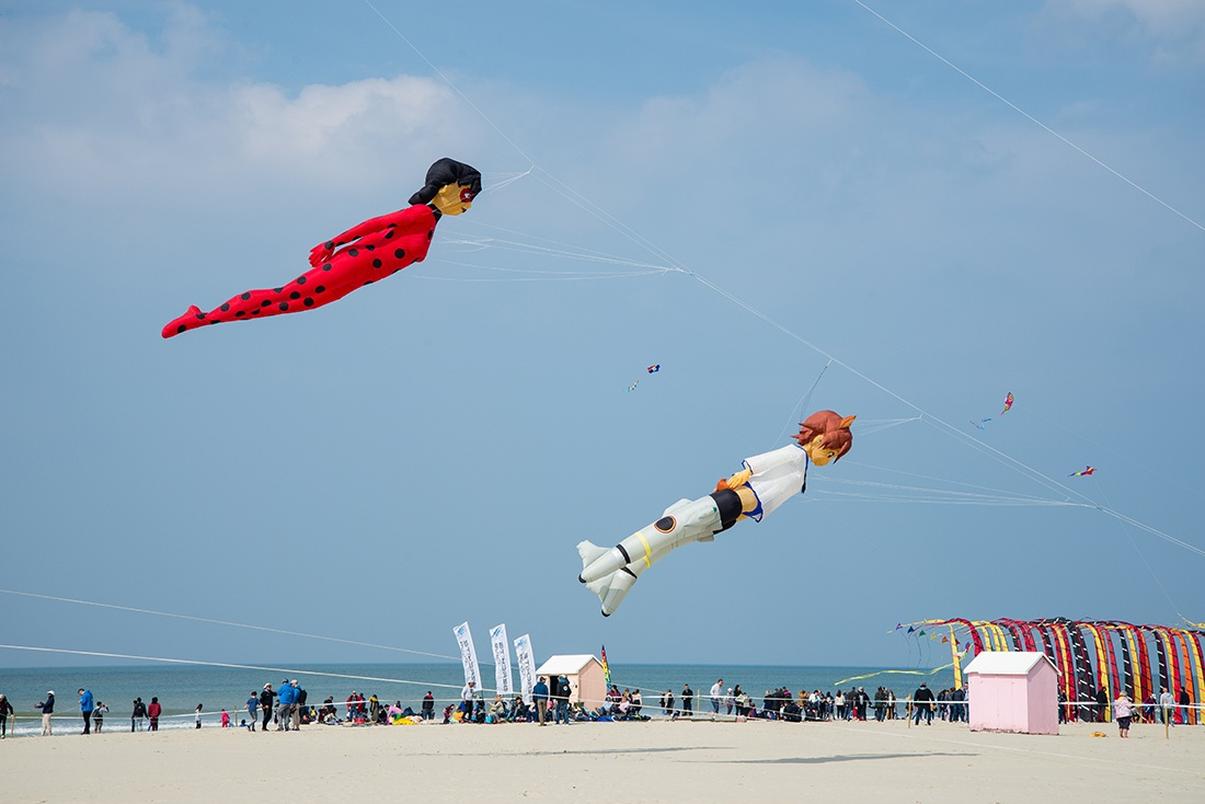 rencontres internationales de cerfs-volants, berck, pas-de-calais, hauts de france