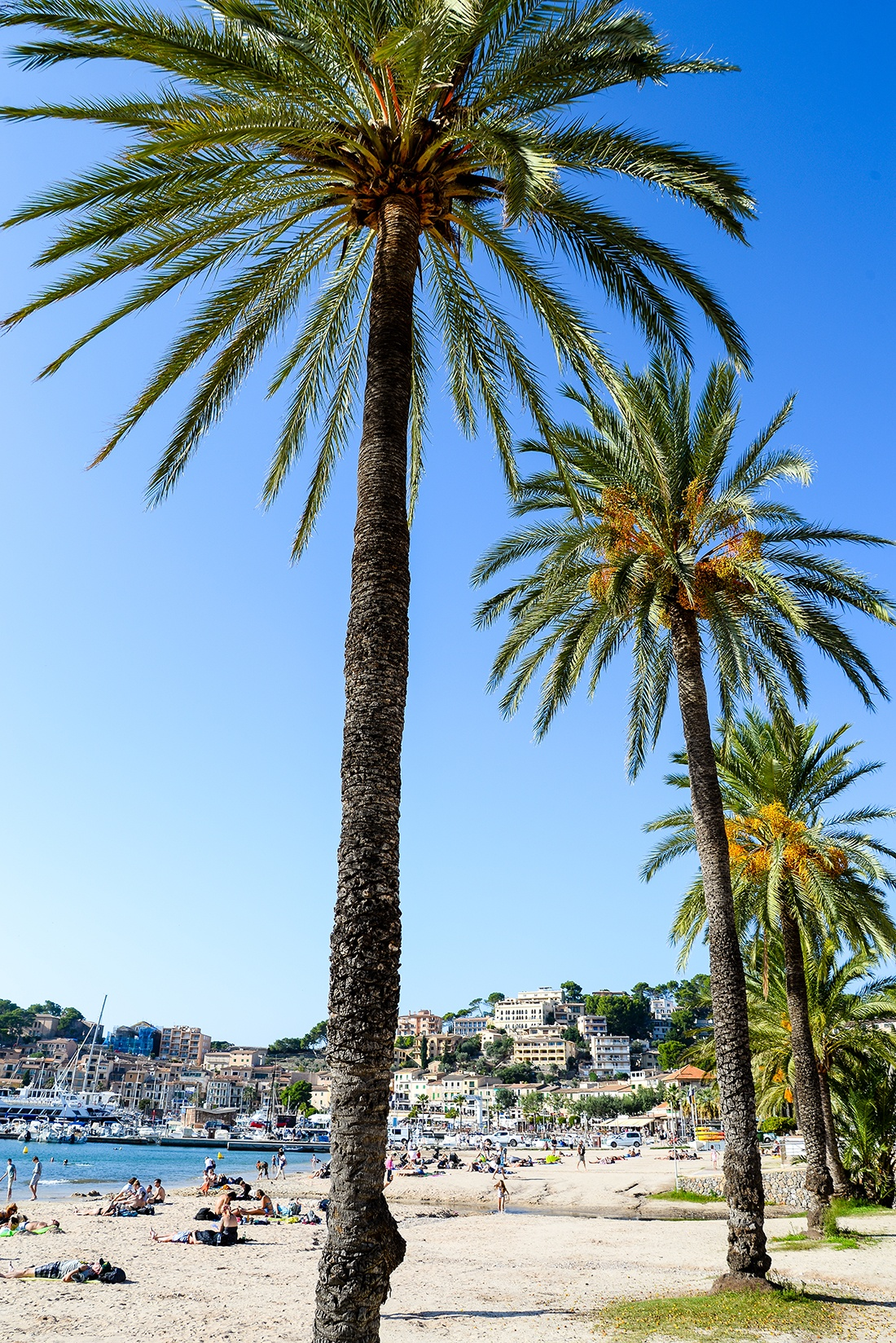 Port Soller, road-trip dans l'ouest de Majorque et la Sierra tramuntana