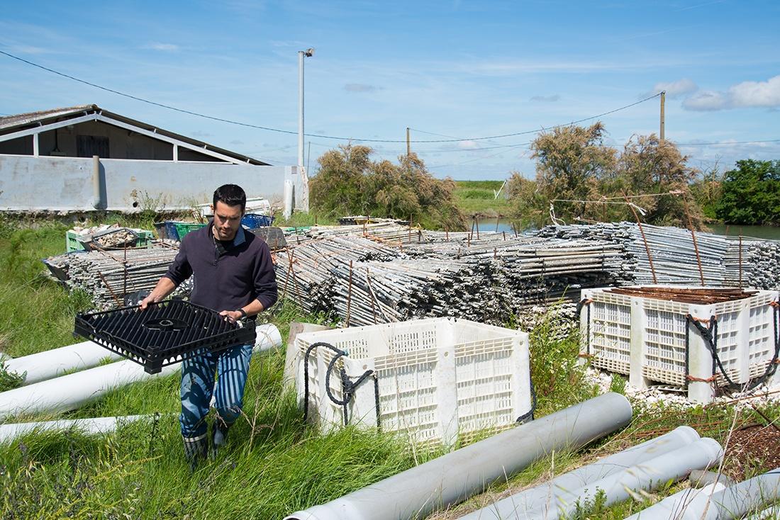 Fabien Gautret, visite d'une exploitation ostréicole autour de Royan