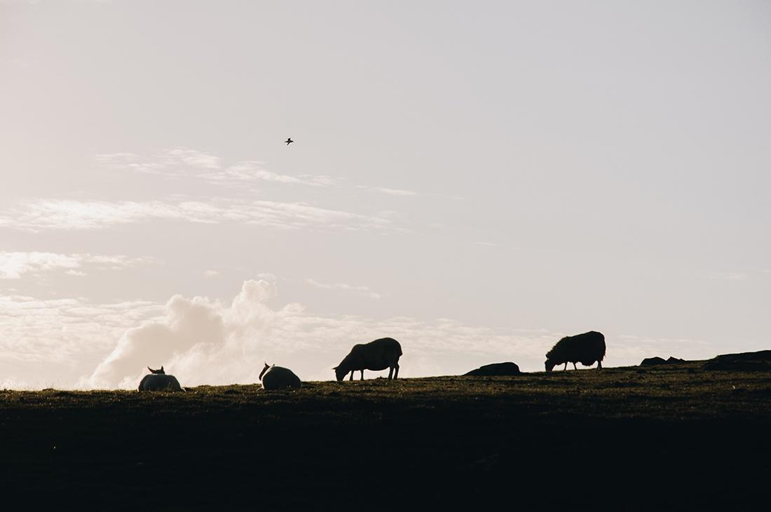 visite de l'île de Skye, ecosse