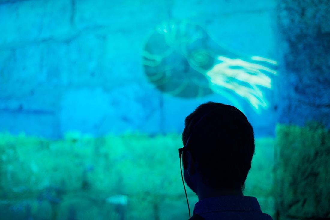 visite des souterrains de laon, aisne, secrets sous la ville, avis