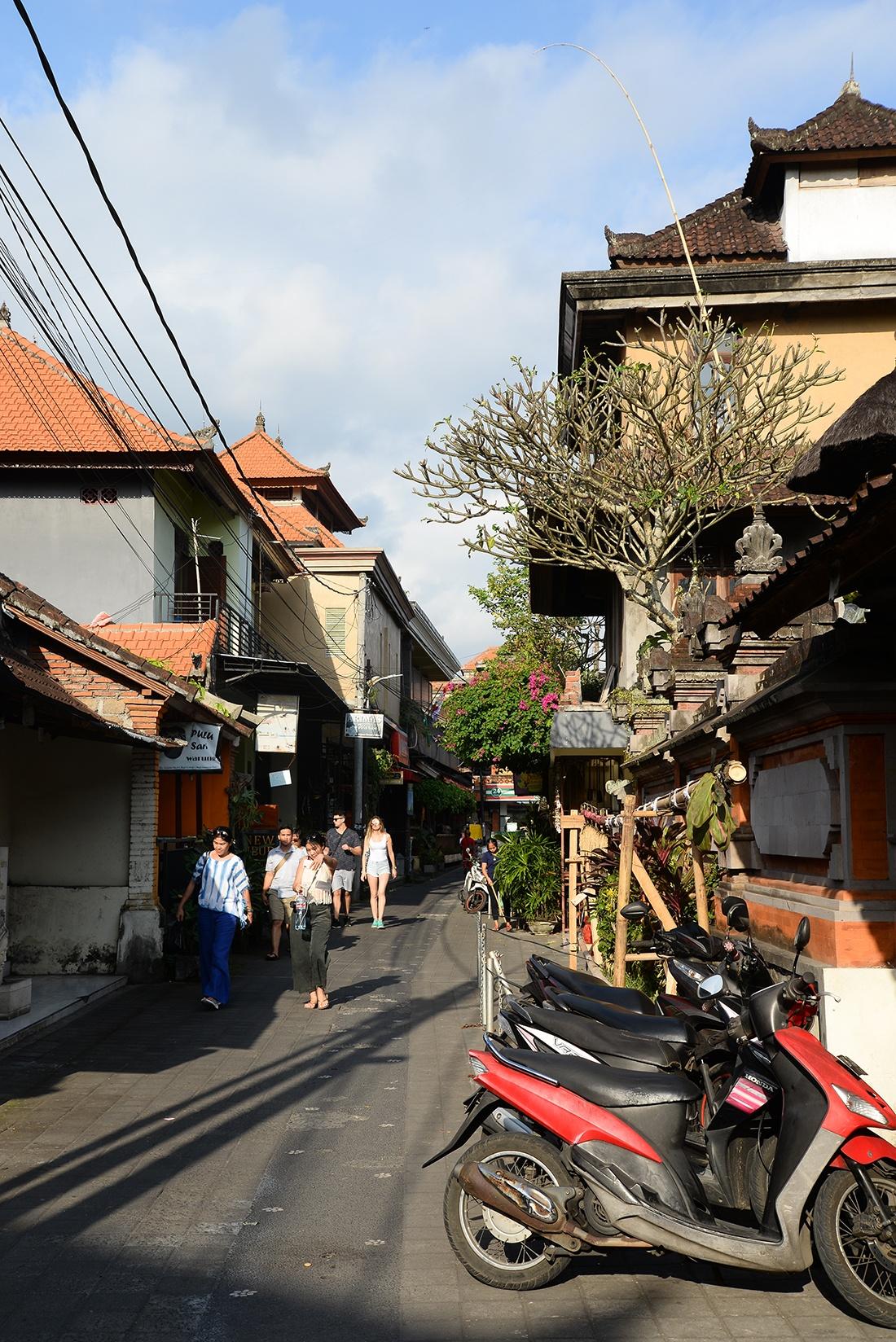 rues ubud, Bali