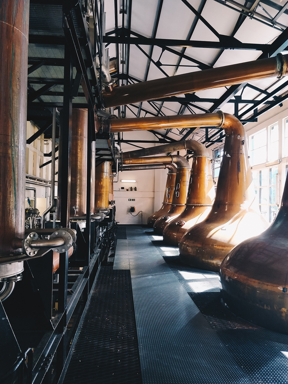 distillerie glen ord, inverness