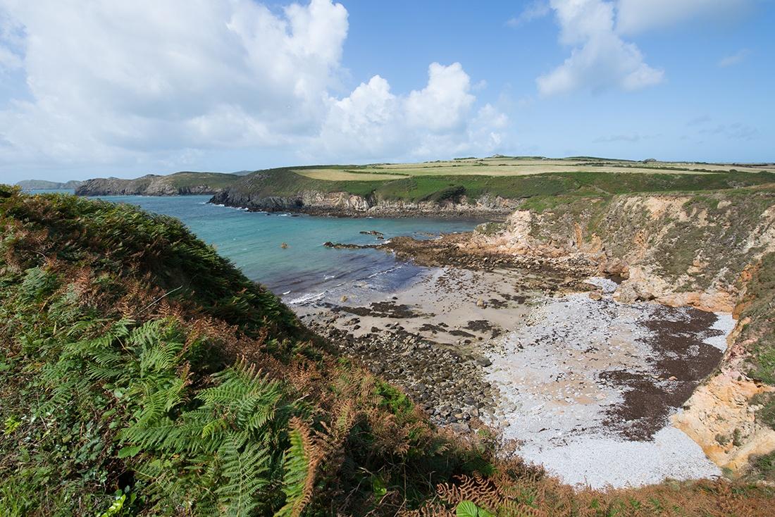randonnée sur la côte galloise , dans le Pembrokeshire , au départ de Porth Clais harbour