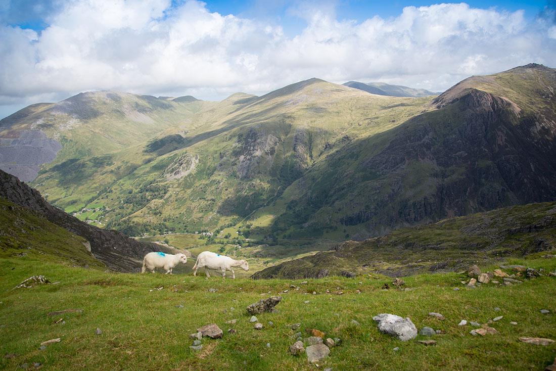 randonnée du mont snowdon, snowdonia, pays de galles