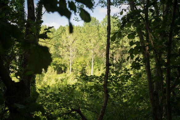 randonnée de Saint-Martin des Prés à Trefcon