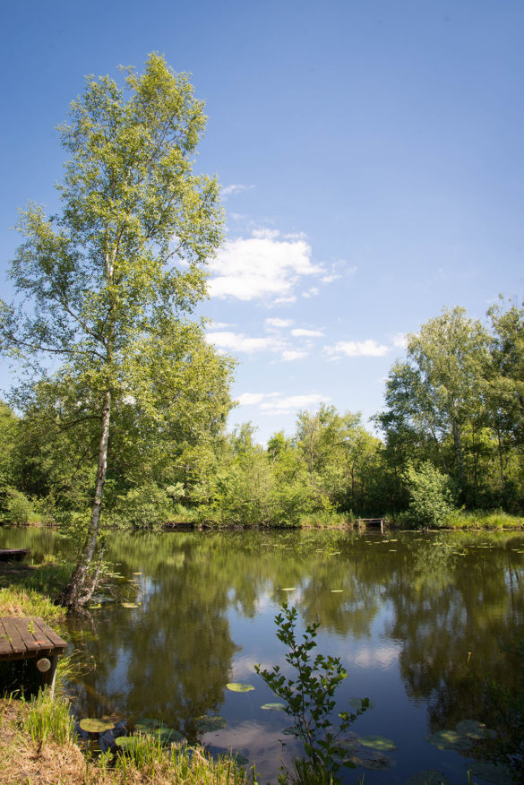 La vallée de la Somme : autour de Seraucourt-le-Grand, randonnée, aisne