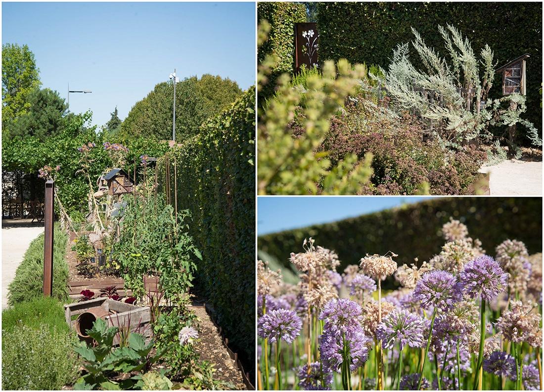 jardin, visite de la maladrerie saint-lazare, oise, hauts-de-france