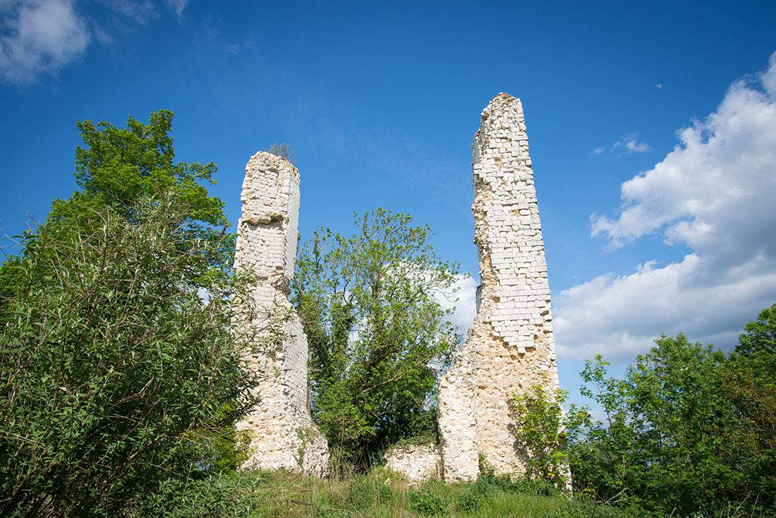 Réserve de l'Etang Saint-Ladre à Boves